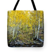 Autumn Stream II Tote Bag