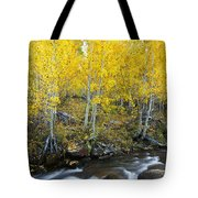 Autumn Stream Iv Tote Bag