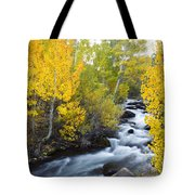 Autumn Stream V Tote Bag