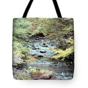 Autumn Streams Tote Bag