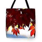 Autumn Sun Glory Tote Bag