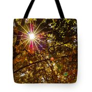 Autumn Sunburst Tote Bag by Carolyn Marshall