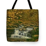 Autumn Surrounded In Color Tote Bag