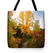 Autumn Trail Tote Bag
