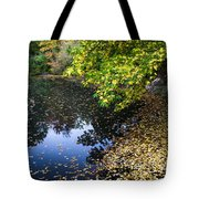 Autumn Tree Colors In Central Park In New York City Tote Bag