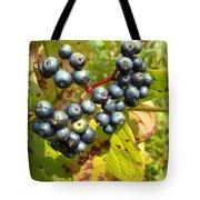 Autumn Viburnum Berries Series #3 Tote Bag