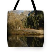 Autumn View Of The Park With Half Dome Tote Bag