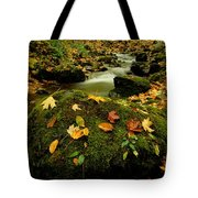 Autumn View Shows Fallen Leaves Tote Bag