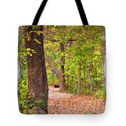 Autumn Walk - Impressions Tote Bag