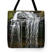 Autumn Water Fall Tote Bag