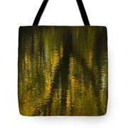 Autumn Water Reflection Abstract I Tote Bag