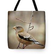 Autumn Wildlife Tote Bag