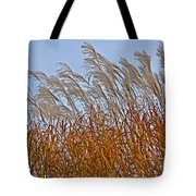 Autumn Wind Through The Grass Tote Bag