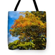 Autumnal Fruition Tote Bag