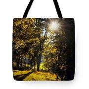 Autumnal Morning Tote Bag