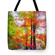 Autumnal Rainbow Tote Bag