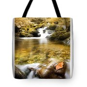 Autumnal Stream Tote Bag by Mal Bray