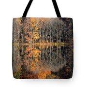 Autumns Art Tote Bag