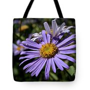 Autumn's Aster Tote Bag