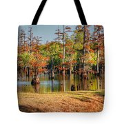Autumn's Beauty And Reflection Tote Bag