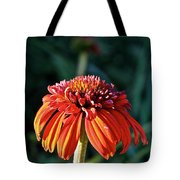 Autumn's Cone Flower Tote Bag