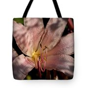Autumn's Lily Tote Bag