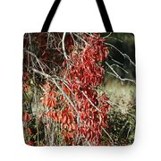 Autumns Red Vines Tote Bag