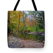Autumn's Splendor Tote Bag