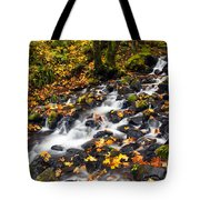 Autumn's Staircase Tote Bag by Mike  Dawson