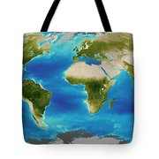 Average Plant Growth Of The Earth Tote Bag