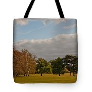 Avery Hill Park Tote Bag