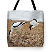 Avocets At Nest Tote Bag