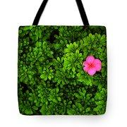 Azalea On Boxwoods Tote Bag