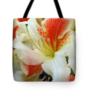 Azaleodendron Glory Of Littleworth Tote Bag