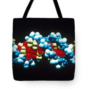 B-dna Molecular Model Tote Bag by Science Source