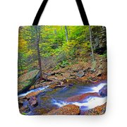 B Reynolds Falls Panorama Tote Bag