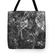 B-w 0522 Tote Bag