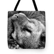 B W Slumber Tote Bag