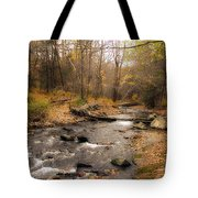 Babbling Brook In Autumn Tote Bag