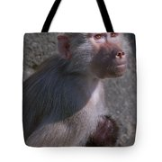Baboon Carrying Her Baby Tote Bag