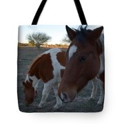 Baby And Mom Tote Bag
