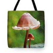 Baby And Parent Mushroom Tote Bag
