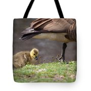 Baby Back Tote Bag
