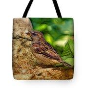 Baby Birdie Tote Bag