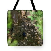 Baby Eastern Cottontail Rabbit Dmam011 Tote Bag
