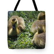 Baby Geese Tote Bag