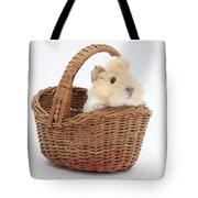 Baby Guinea Pig In A Wicker Basket Tote Bag