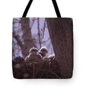 Baby Hawks Tote Bag