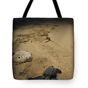 Baby Leatherback Turtle On Beach Tote Bag