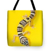 Baby Leopard Gecko Tote Bag